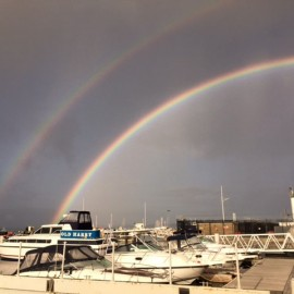 Somewhere, Under the Rainbow, your Whaler waits for you ….